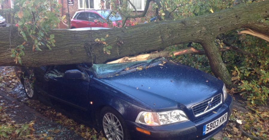 Pictures: Tree crushes car in Hale as Hurricane Gonzalo hits Altrincham
