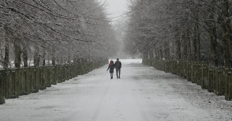 White Altrincham: 12 pictures of Dunham Massey in the snow
