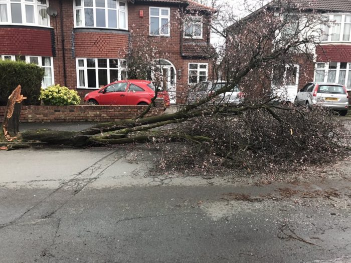 Acresfield Lane in Timperley. Pic: Tim James