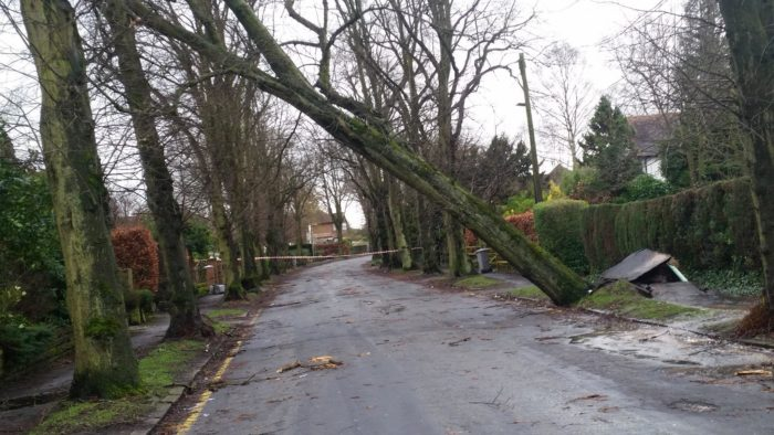 Mayfield Road in Timperley