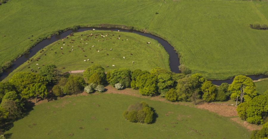 River Bollin to benefit from £10m regeneration project led by National Trust