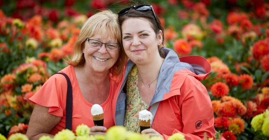 RHS Show returns to Tatton Park for a 'celebration of colour and love'