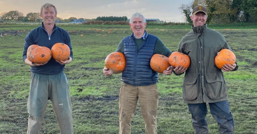 From apples to pumpkins, it's a family affair in Dunham Massey