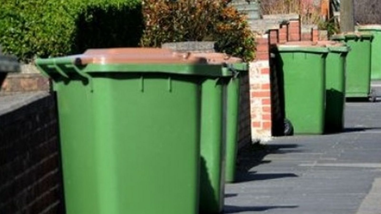 greenbins (1)