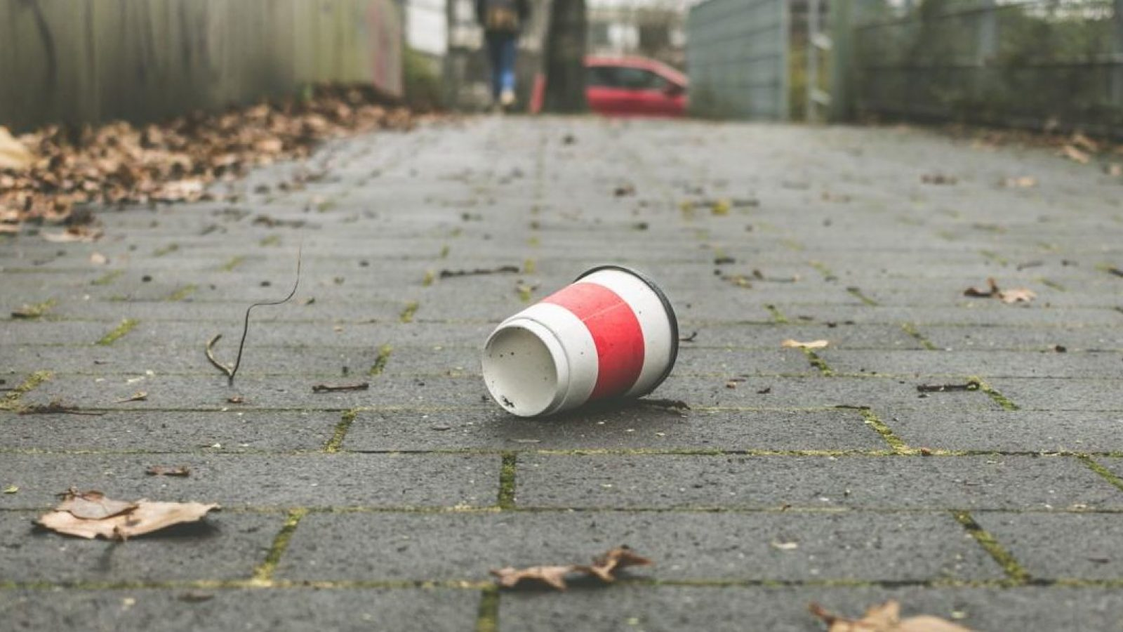 Anyone caught dropping litter will face an on-the-spot fine of £80